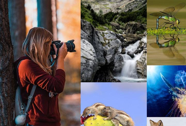 Naturajazz convocatoria fotografía