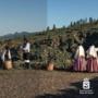 Fiestas de mayo en Guía de Isora - Actuación Escuela Munipal de Folclore