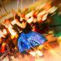 Séptima Muestra Nacional de Folclore 'Manolo Ramos'