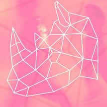 Edición Especial FAM2020, Festival de las Artes del Movimiento
