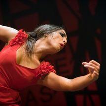 VI Festival Flamenco Romí