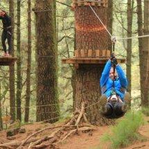 Comienza el año con Forestal Park