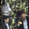Filmoteca en la Fundación: 'El bosque...