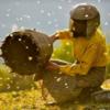 Documental del Mes: 'Honeyland'