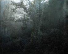 Apnée-Aurélia-Frey Fotonoviembre 17-18