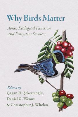 Why Birds Matter - 9780226382630