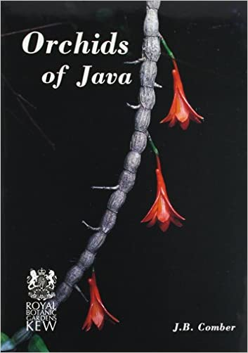 Orchids of Java - 9780947643218
