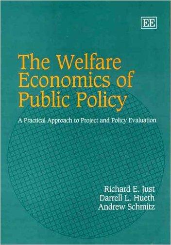 The Welfare Economics of Public Policy - 9781845425784