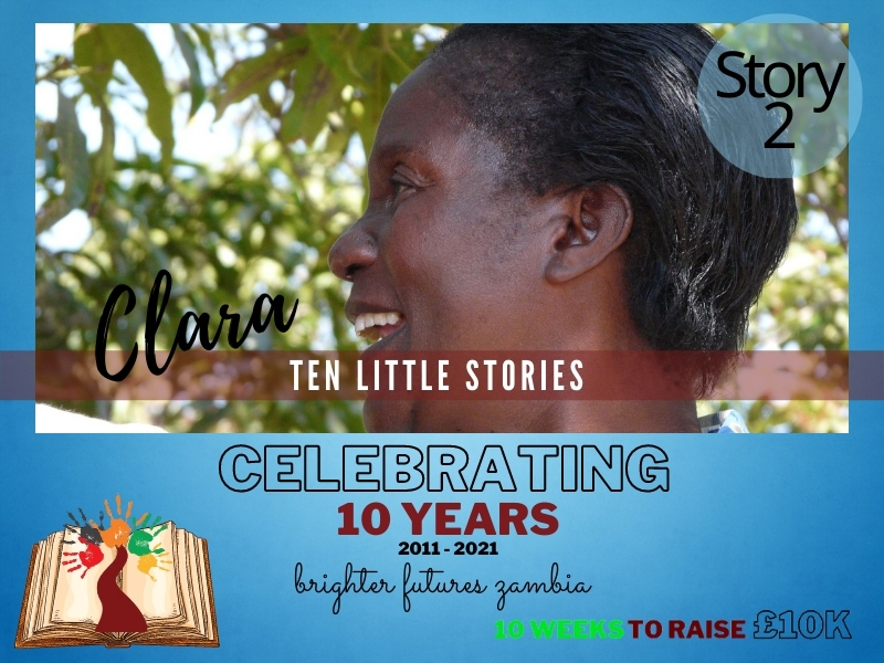 Story2:Clara the Hero Project Assistant