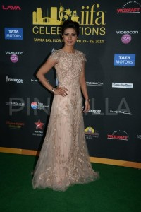 IIFA-awards-green-carpet