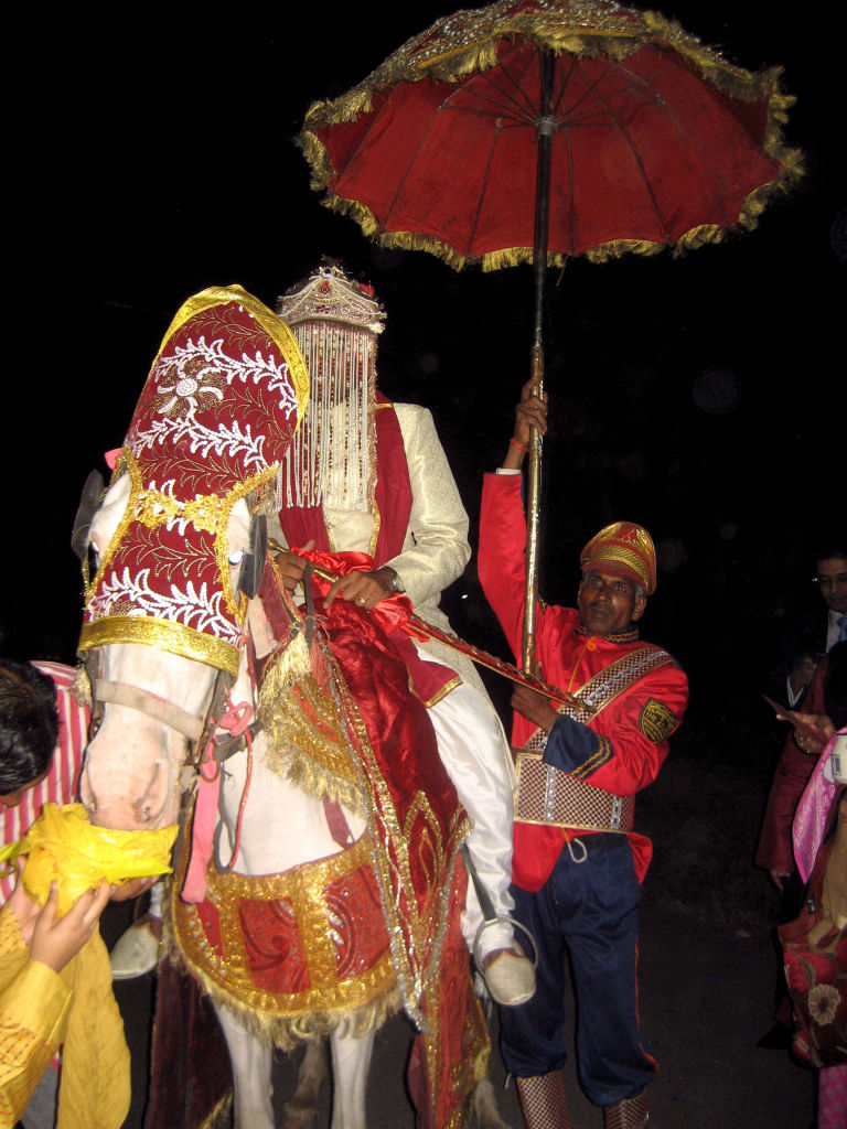 Indian Horse - Indian Wedding