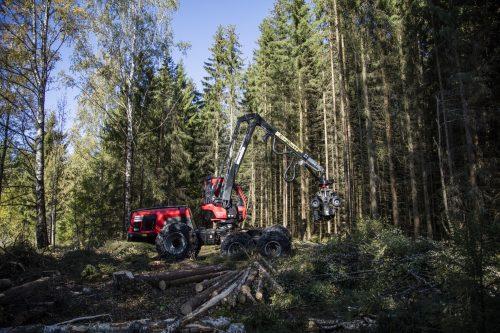 Skogens Menn 7