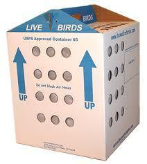 8RACING PIGEON CARRIER / CARRY / TRANSPORT SHIPPING BOXES