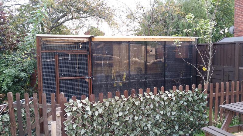 Metal Bird Aviary for sale | Birdtrader
