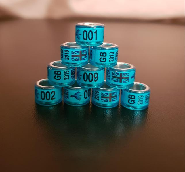 2020 GB UK Flag Show Rings *** SPECIAL OFFER *** 10 x Pigeon Rings 7mm