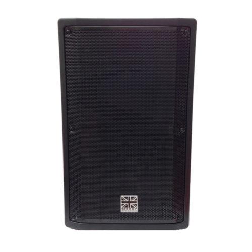 Gamma 10″ Passive 300w RMS speaker