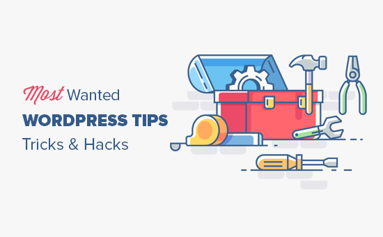 55+ Most Wanted WordPress Tips, Tricks, and Hacks