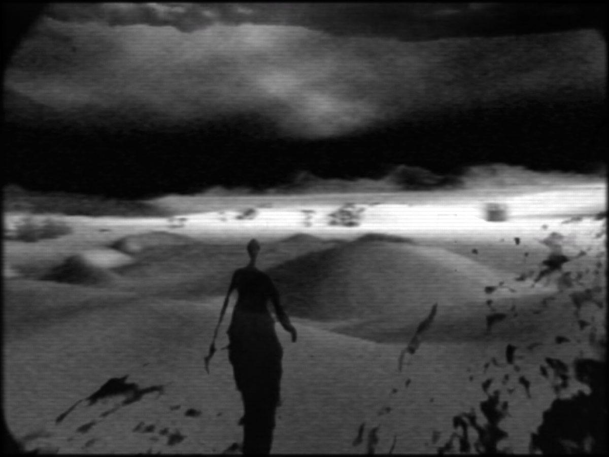 Night Journey Shadow