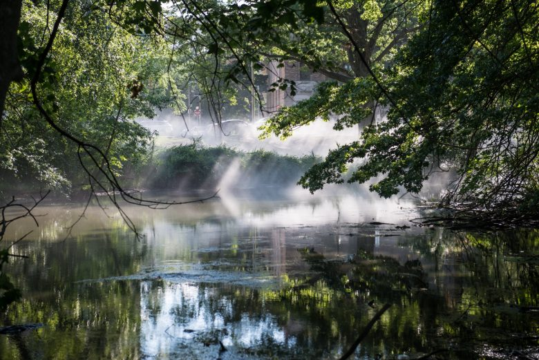 Fog x FLO: Fujiko Nakaya on the Emerald Necklace