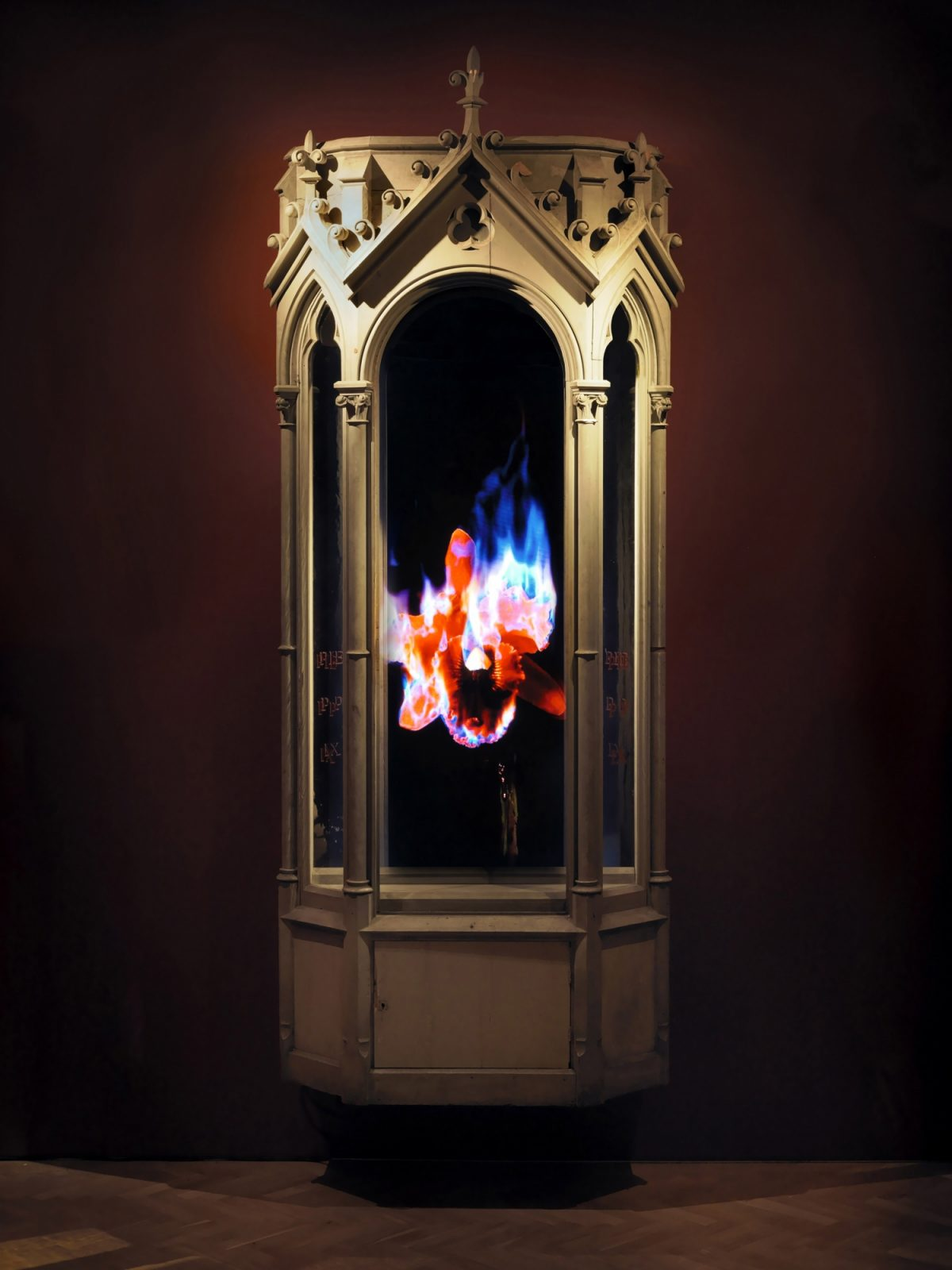 Mat Collishaw Creation Condemned Installation View 2010 Courtesy The Artist And Blain Southern 1