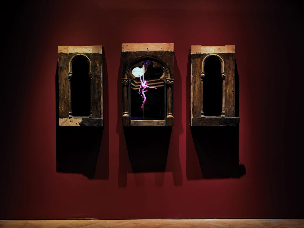 Mat Collishaw Creation Condemned Installation View 2010 Courtesy The Artist And Blain Southern 5