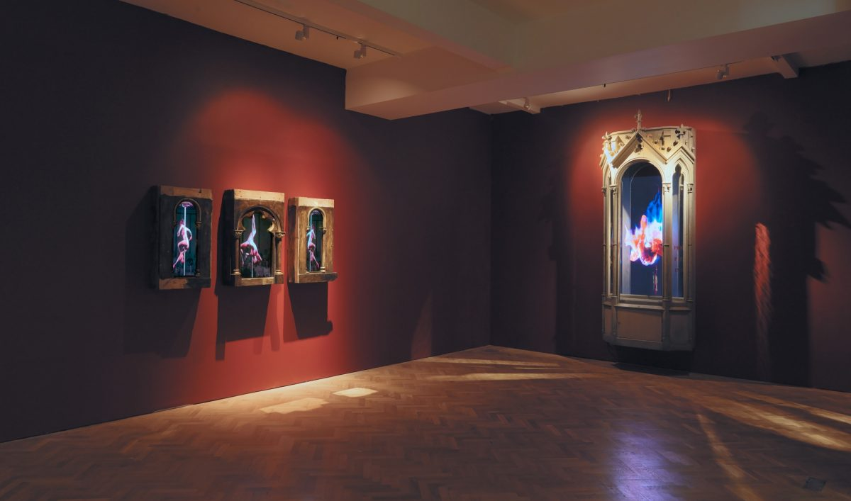 Mat Collishaw Creation Condemned Installation View 2010 Courtesy The Artist And Blain Southern 6