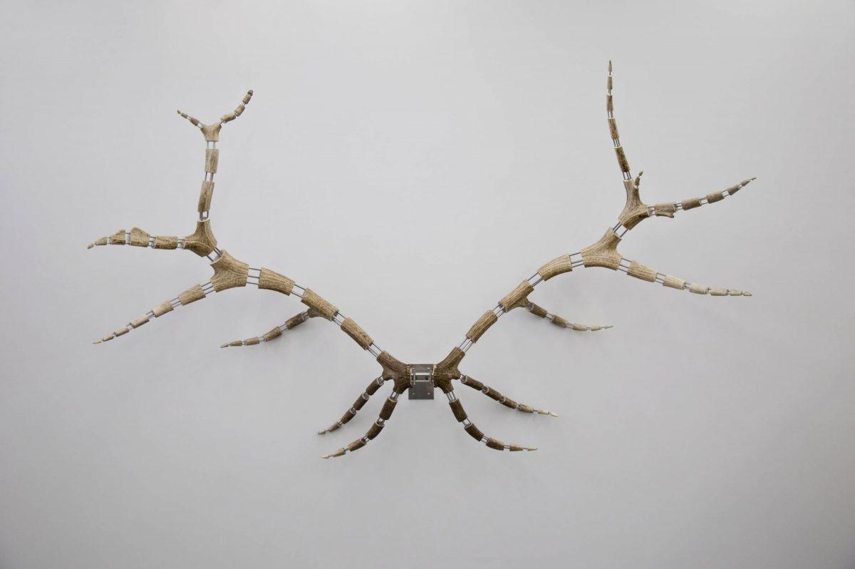 Improved Rack (Elk #18)