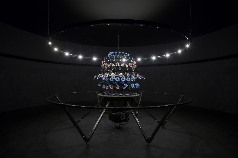 Mat Collishaw, The Centrifugal Soul