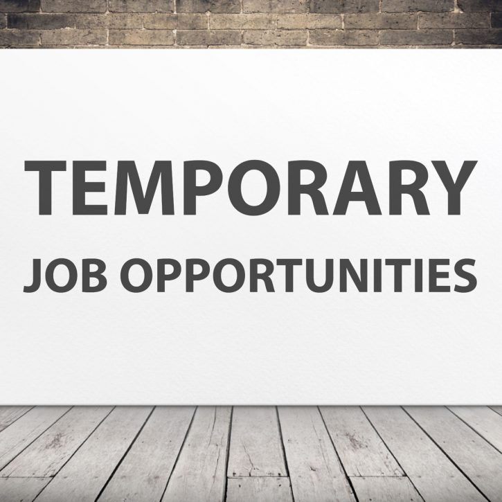 temporary employment advantages and disadvantages