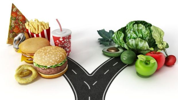 Fast Food Essays Writing Guide 10