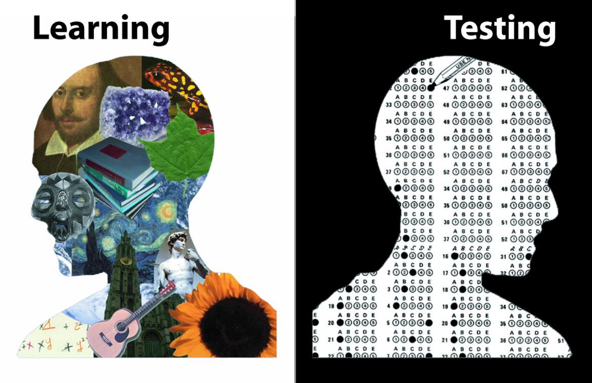 standardized-testing-essay4