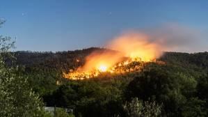 Quelles règles pour protéger les forêts des incendies ?