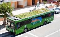 Des jardins pour toits ... de bus