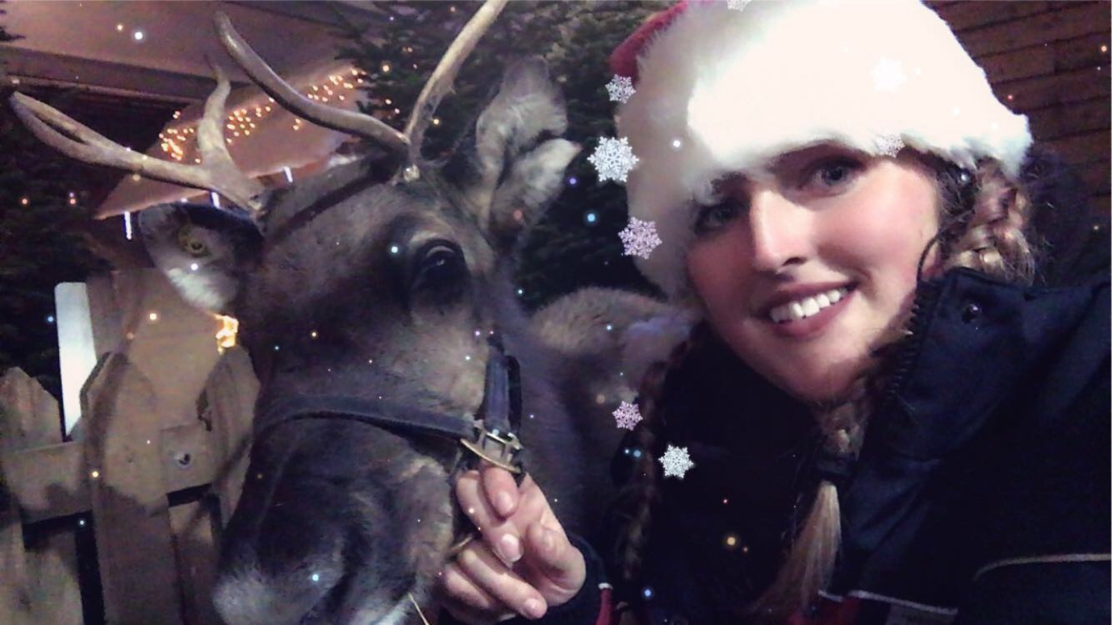 Reindeer herder hopes Muddy Matches can play Cupid