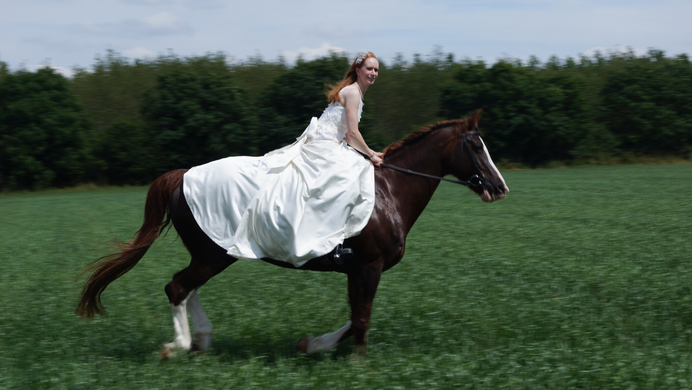 Sophie & Edward: happy, hitched and horse loving