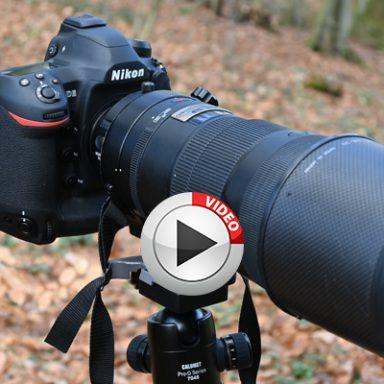Praxis-Test Nikon D6