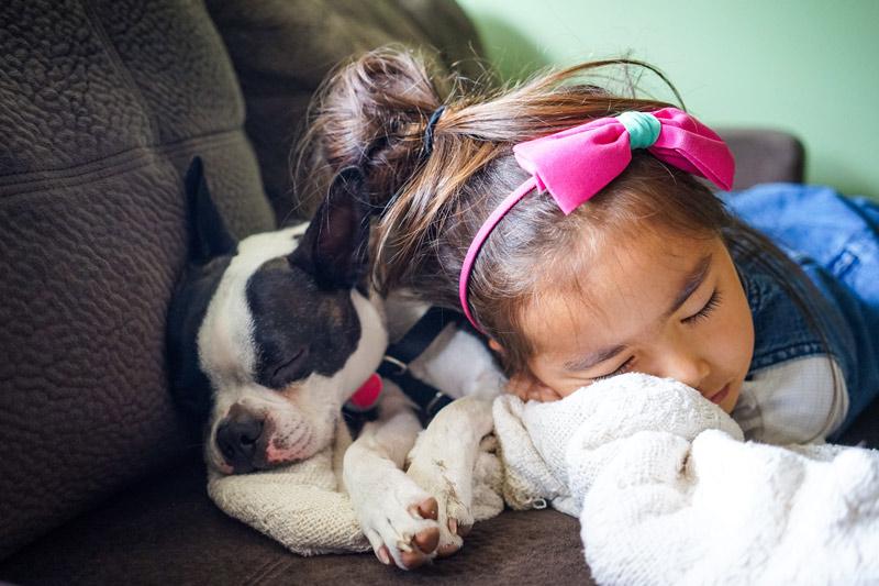 Tierfotografie - Hund mit Kind
