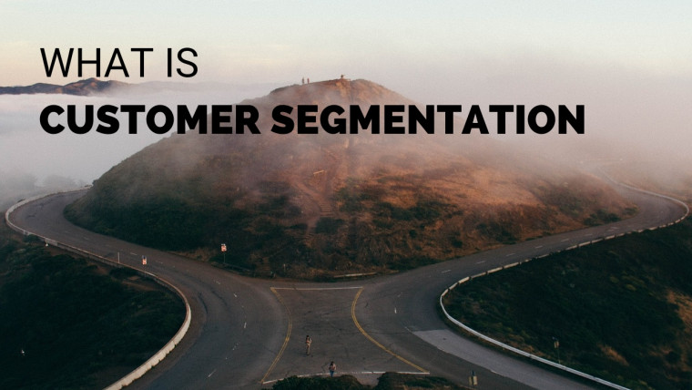 WHAT IS CUSTOMER SEGMENTATION