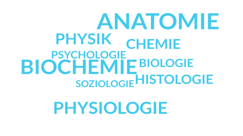 Nett Kostenlos Anatomie Und Physiologie Online Kurs Bilder ...