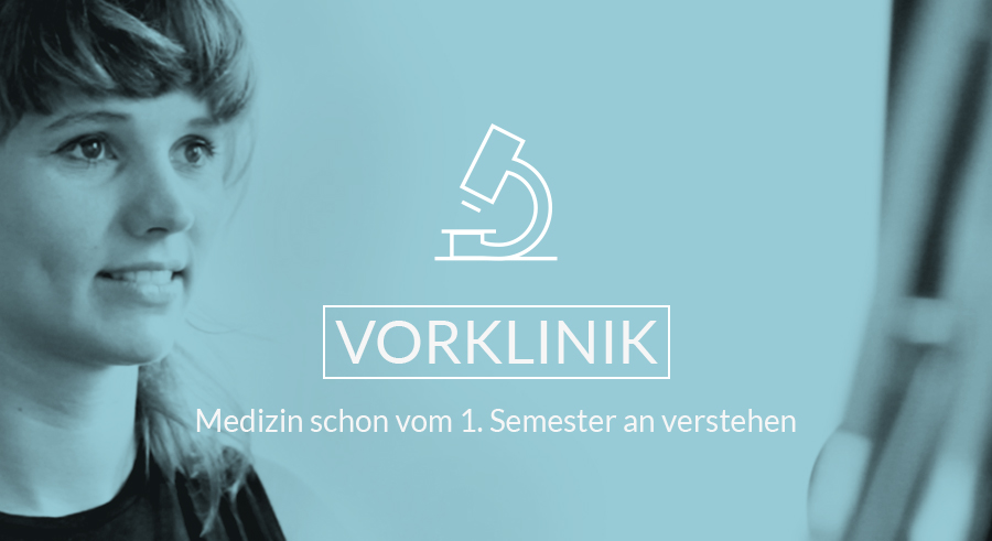 Button: Vorklinik-Studium