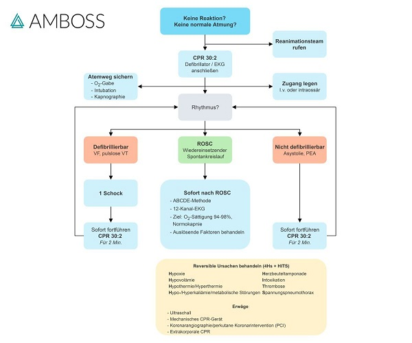amboss-flowchart-advanced-life-support