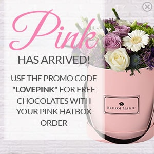 Use the promo code LOVEPINK for free chocolates with your pink hatbox order