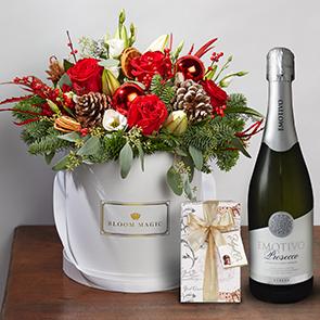 Bloom Magic - Le père Noël Gift Set