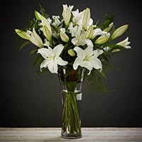 Bloom Magic - Flower Delivery United Kingdom - An elegant and timeless classic. Scented oriental lilies complimented by lush green foliage. By special request, you can choose from either pink or white lillies. This flower arrangement is designed by the countries top florists. Available for next day delivery nationwide.