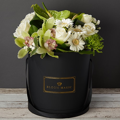 Bloom Magic - Flower Delivery Ireland - This is a chic and contemporary flower arrangement that contains a beautiful mix of white roses, and gerbera, along with green orchids, anthuriums, and bouvardia. This flower arrangement comes recommended for any recipient with a modern home. We offer next day flower delivery for this bouquet to anywhere in Ireland, and same day delivery to Dublin.