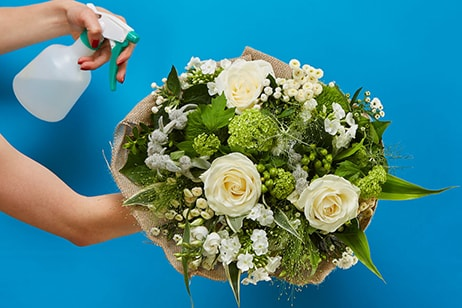 Bloom Magic - Flower Delivery Ireland - Simplicity is pure and gorgeous. This bouquet features white roses and the freshest seasonal white blooms available. Artfully hand-tied with luxurious greenery, this bouquet is perfect for any occasion.