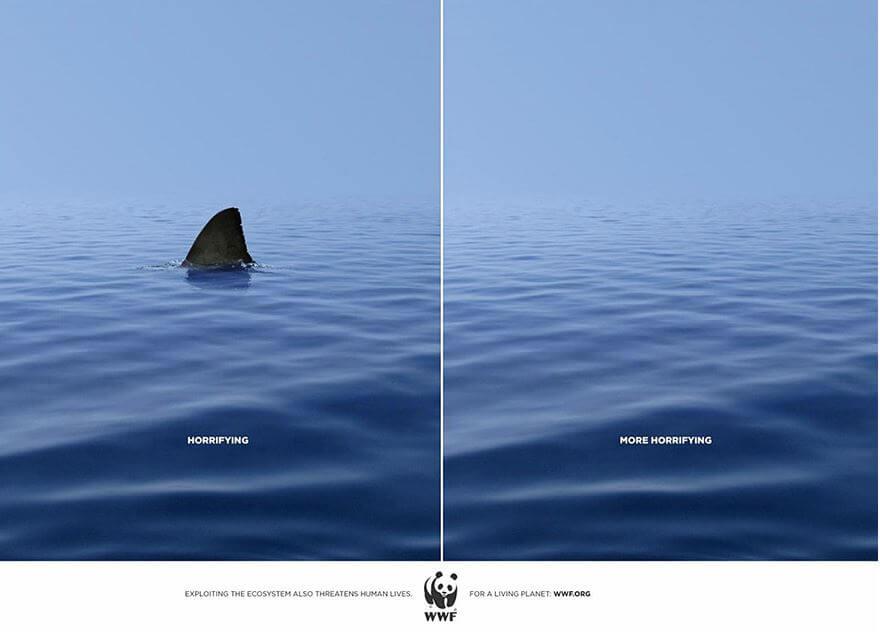 WWF boredpanda com.JPG