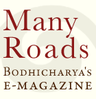 many-roads-button