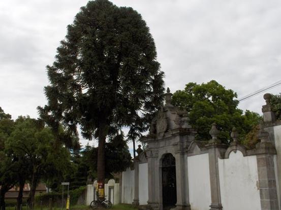 Casa da Torre monastery