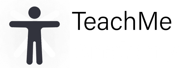 TeachMe Anatomy logo
